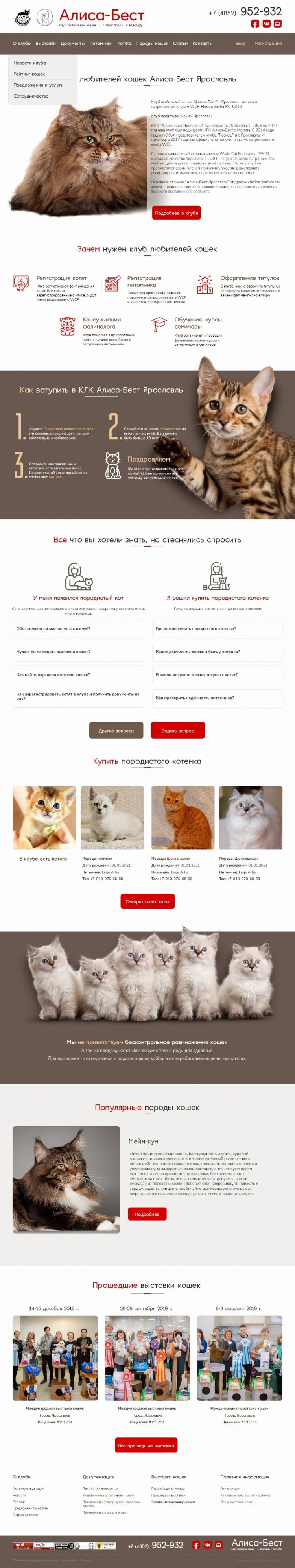 дизайн сайта для клуба любителей кошек