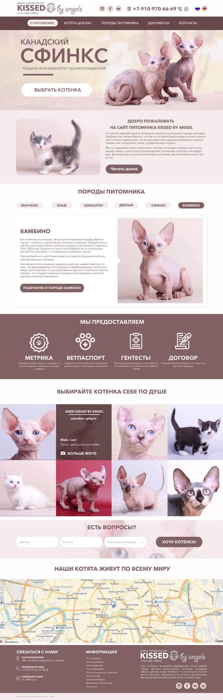 Дизайн сайта для питомника животных, макет сайта для животных, красивые сайты для питомников