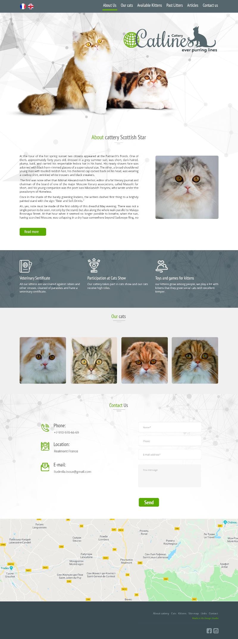 Сайт питомника кошек породы сингапура, создание сайтов для питомников