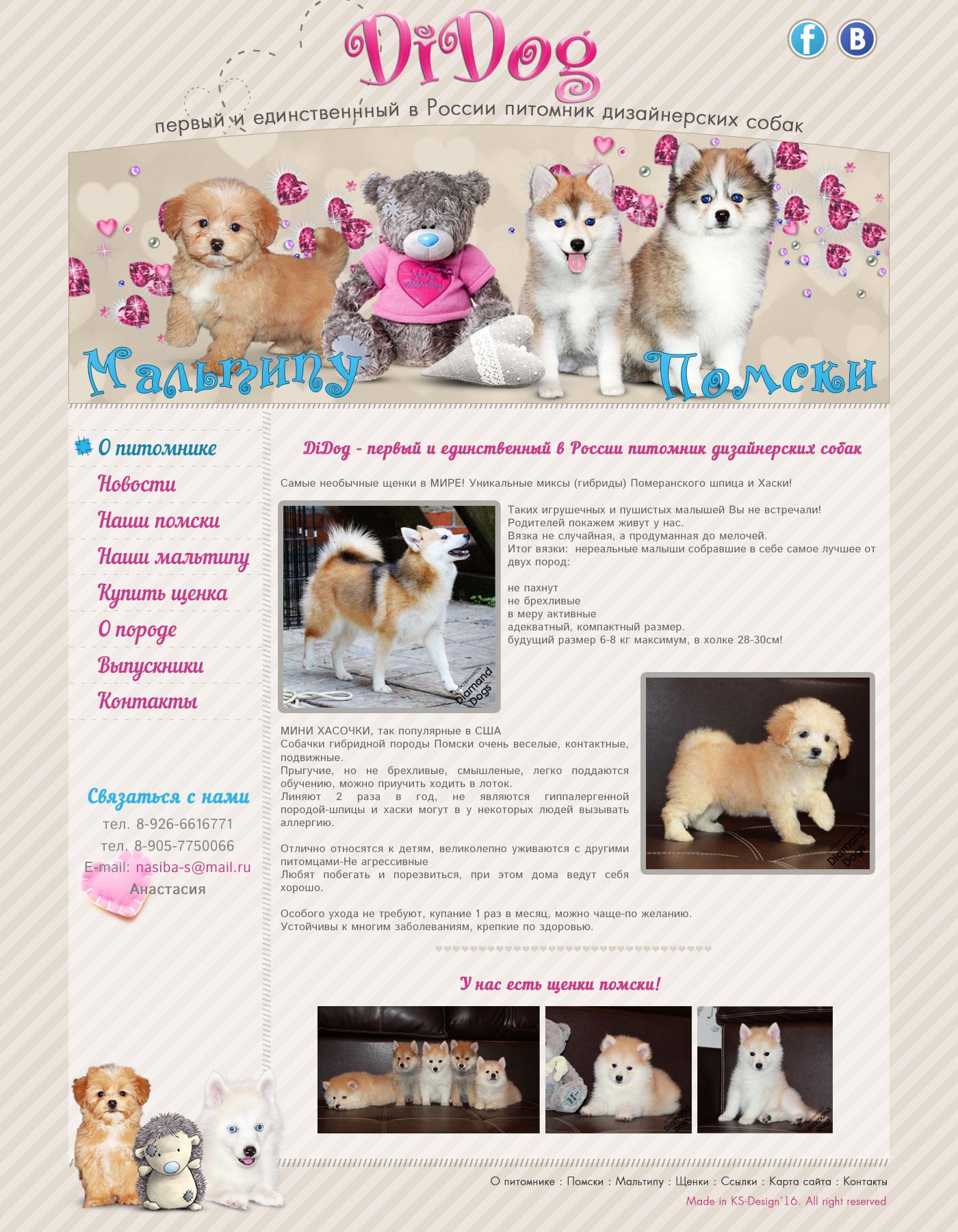 красивые сайты для собак