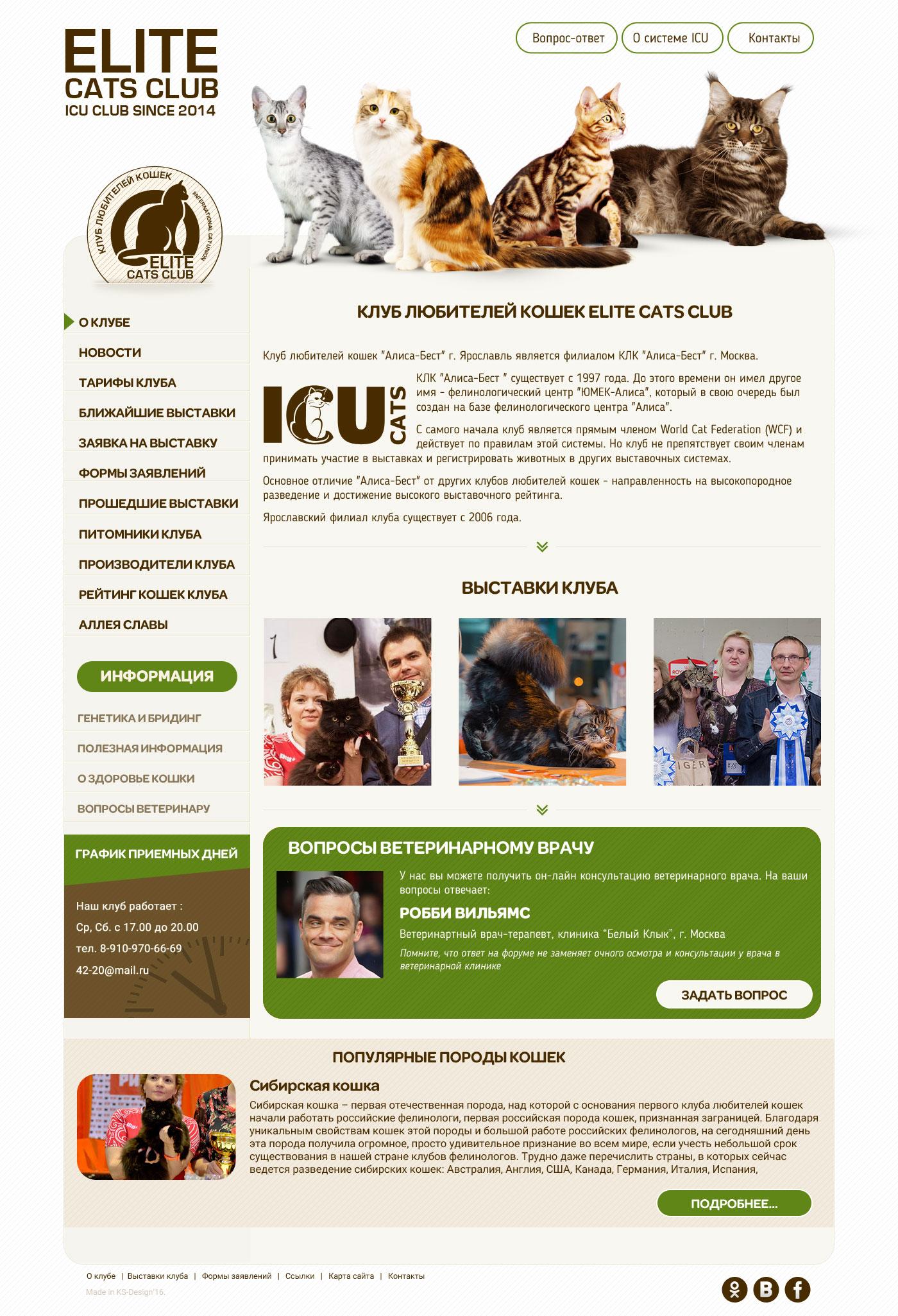 дизайн сайтов для животных