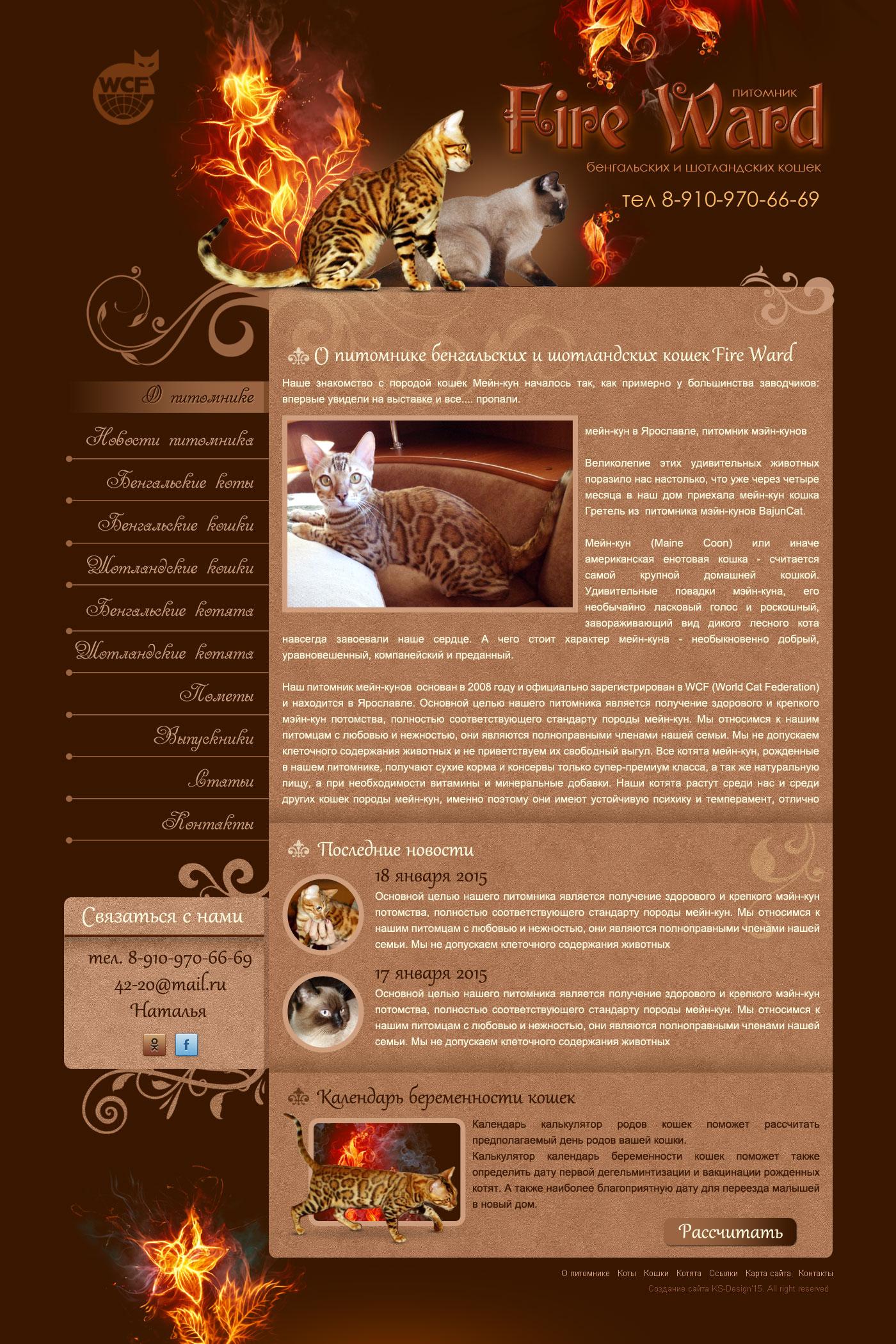 красивый дизайн для сайта