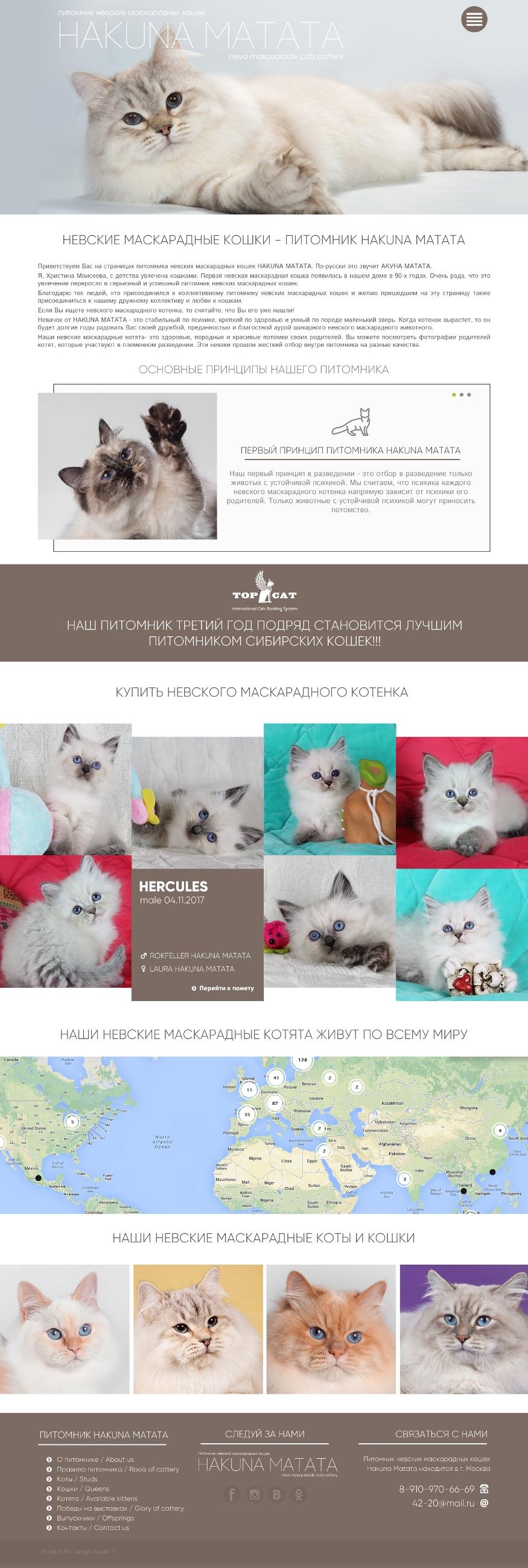 Современный сайт для питомника кошек, сайт для животных