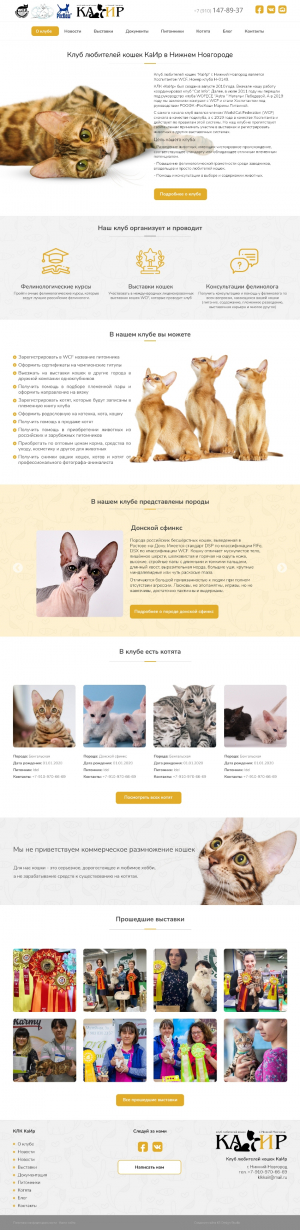 website for cats fun club