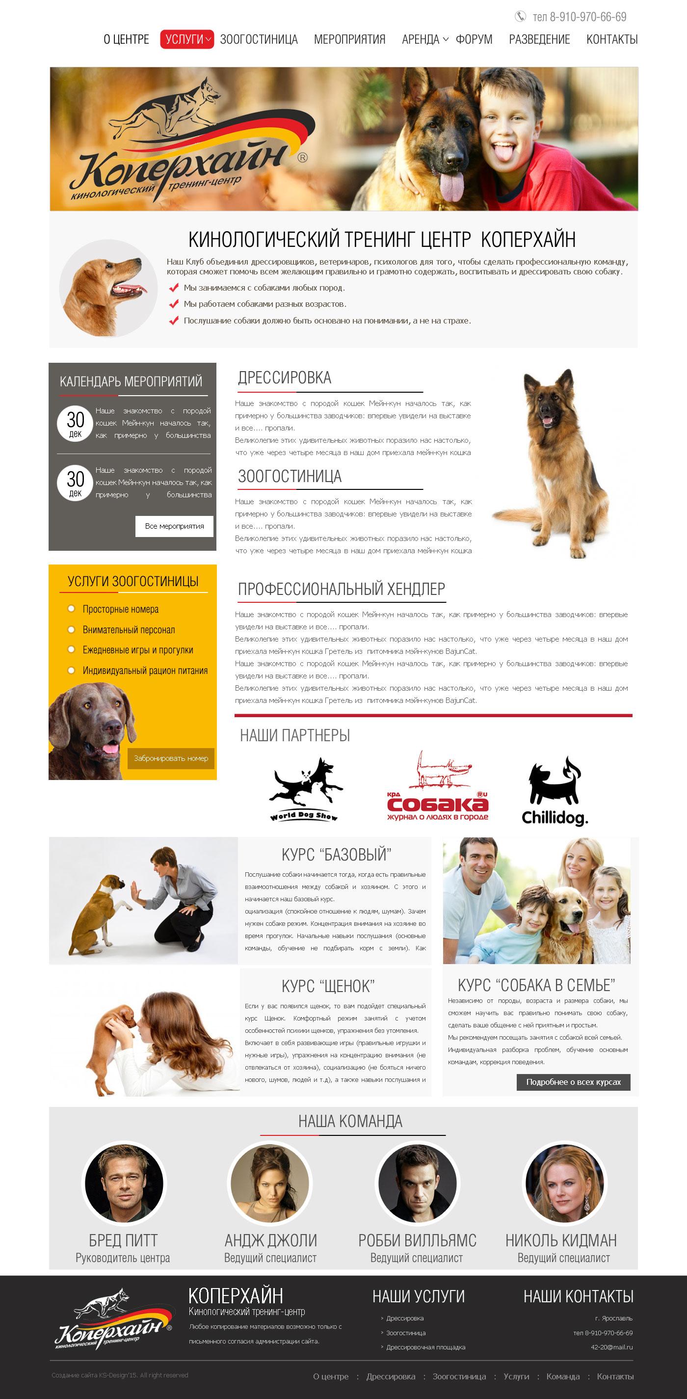 красивый дизайн для сайта собак