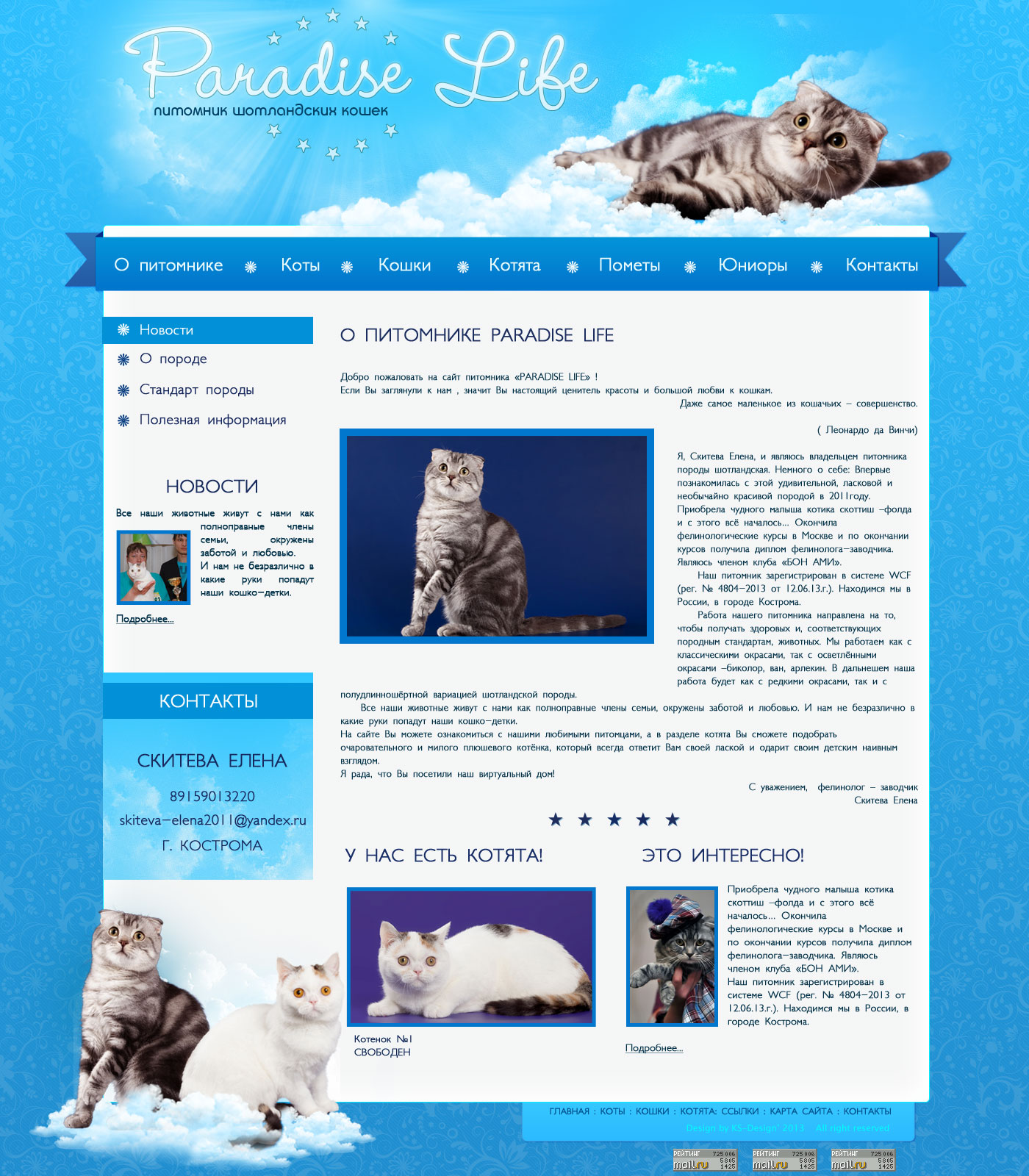 дизайн сайта питомника шотландских кошек