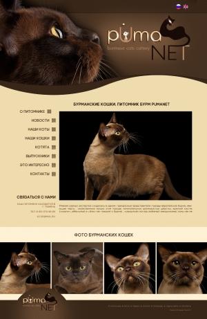 шаблон сайта для животных