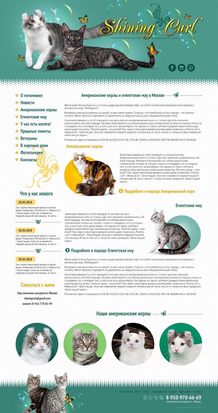 Сайт для питомника кошек, дизайн сайта для кошек
