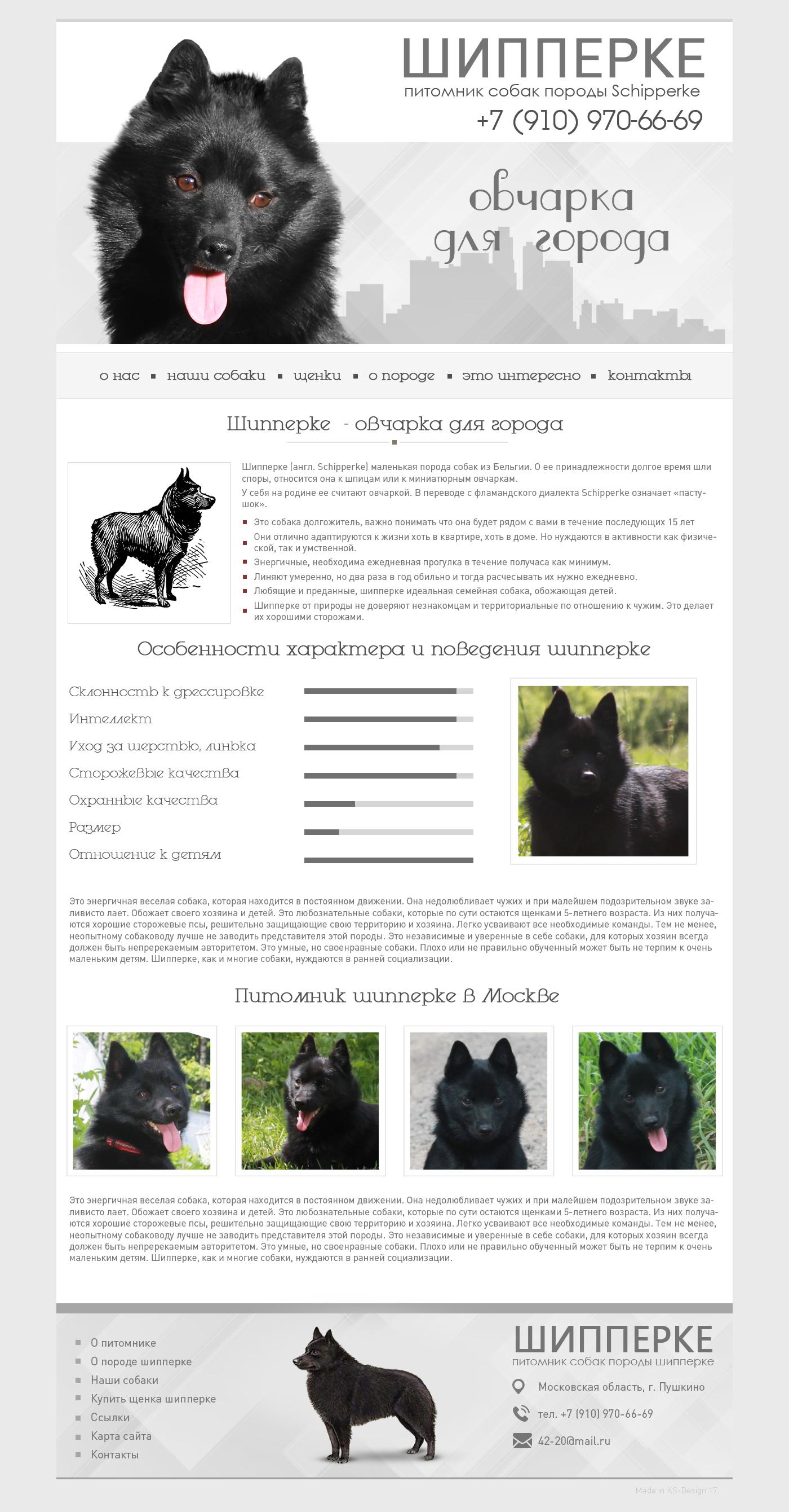 дизайн сайта питомника собак