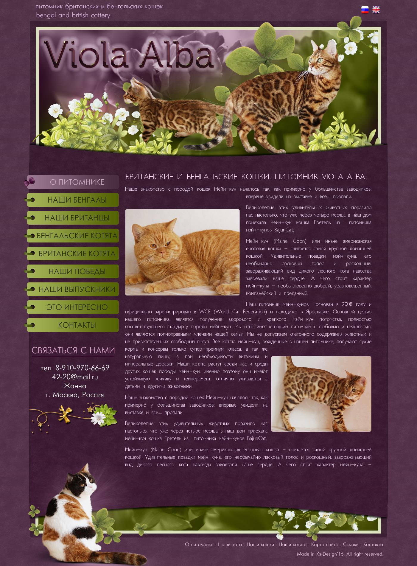 красивые сайты для кошек