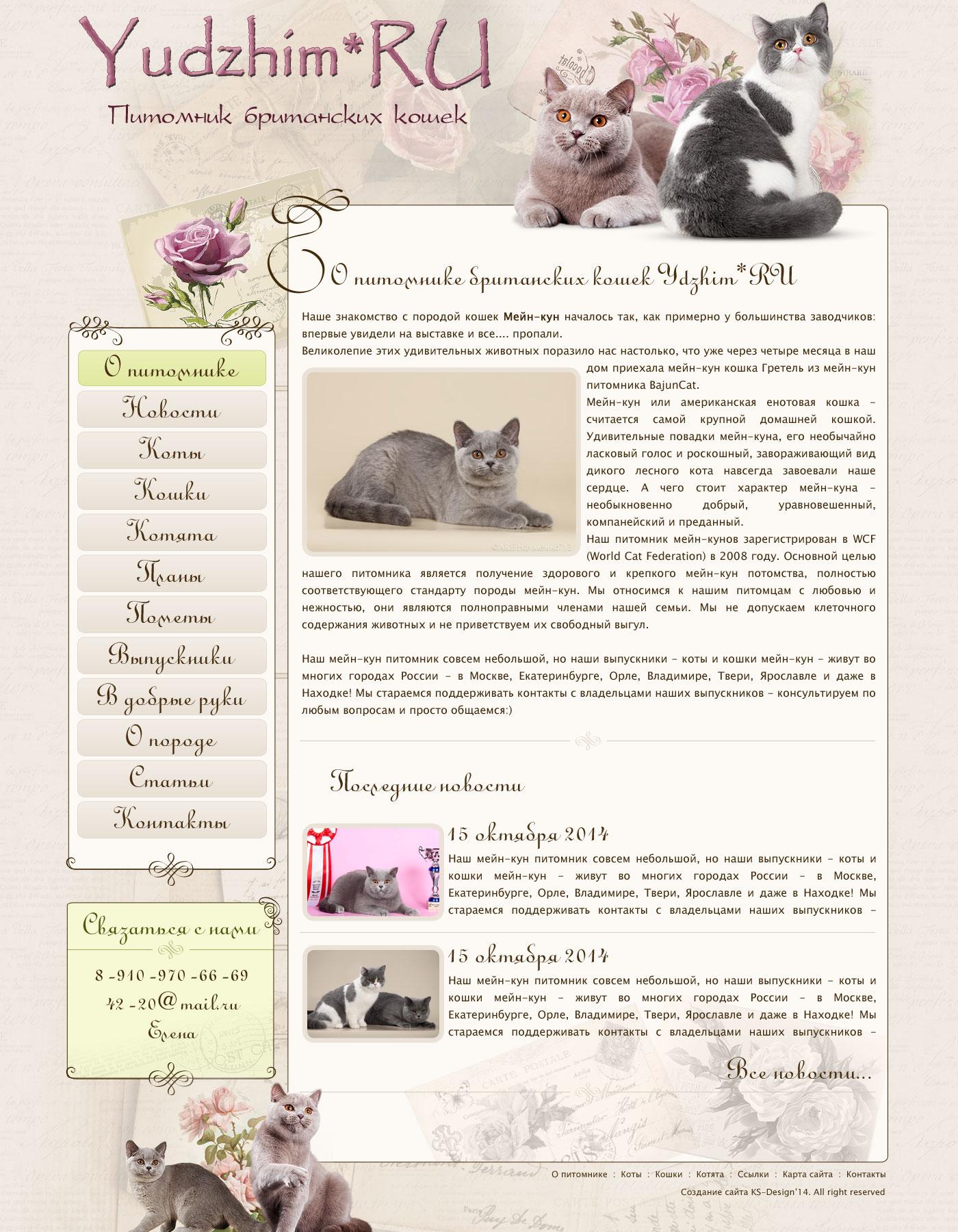 дизайн сайта для питомника кошек